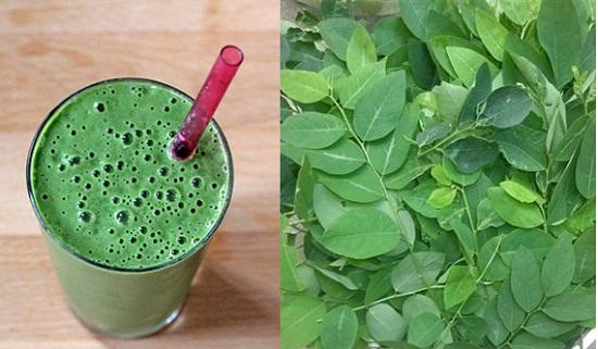 Uống nước rau ngót có tác dụng gì?